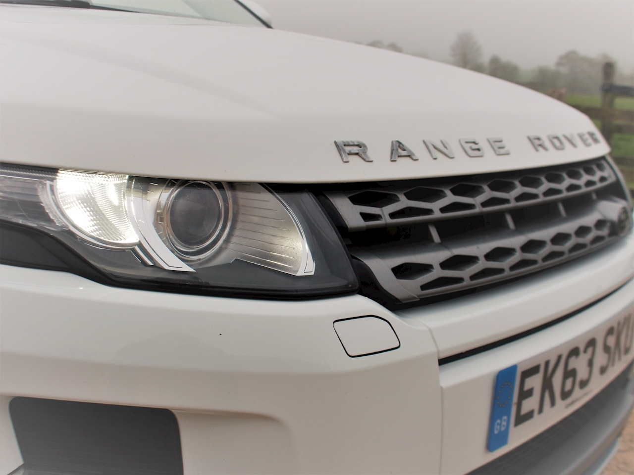 Land Rover Range Rover Evoque Sd4 Pure Tech - Large 16
