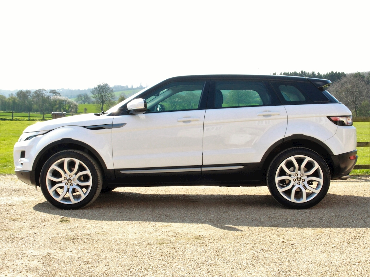Land Rover Range Rover Evoque Sd4 Pure Tech - Large 8