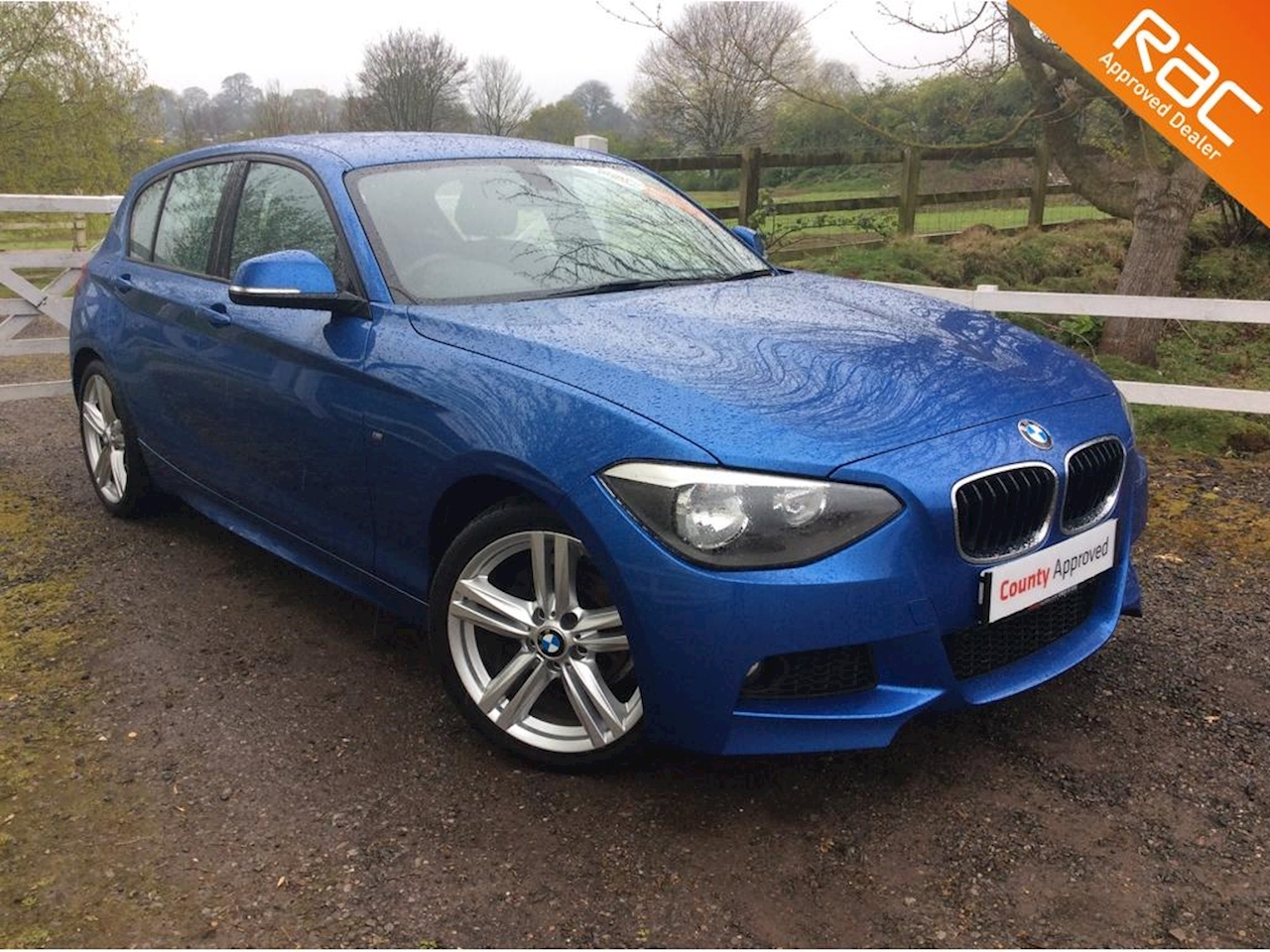 BMW 1 Series 116D M Sport Hatchback 2.0 Manual Diesel