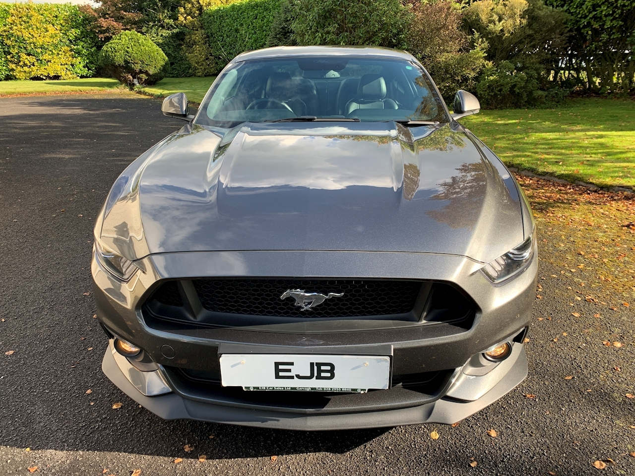 Ford Mustang GT Fastback 5.0 SelShift Petrol
